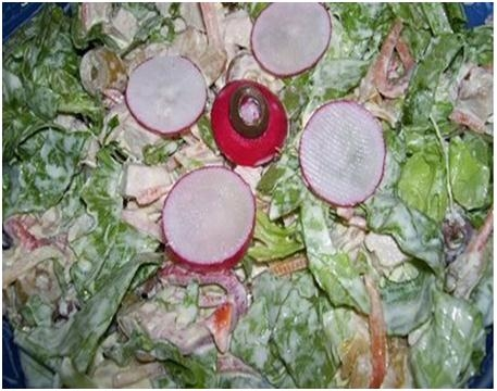 Куриный салат с овощами и майонезом